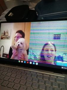 Skyping the dog from hospital